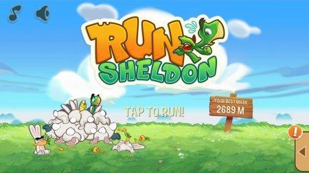 Большое аркадное приключение Run Sheldon