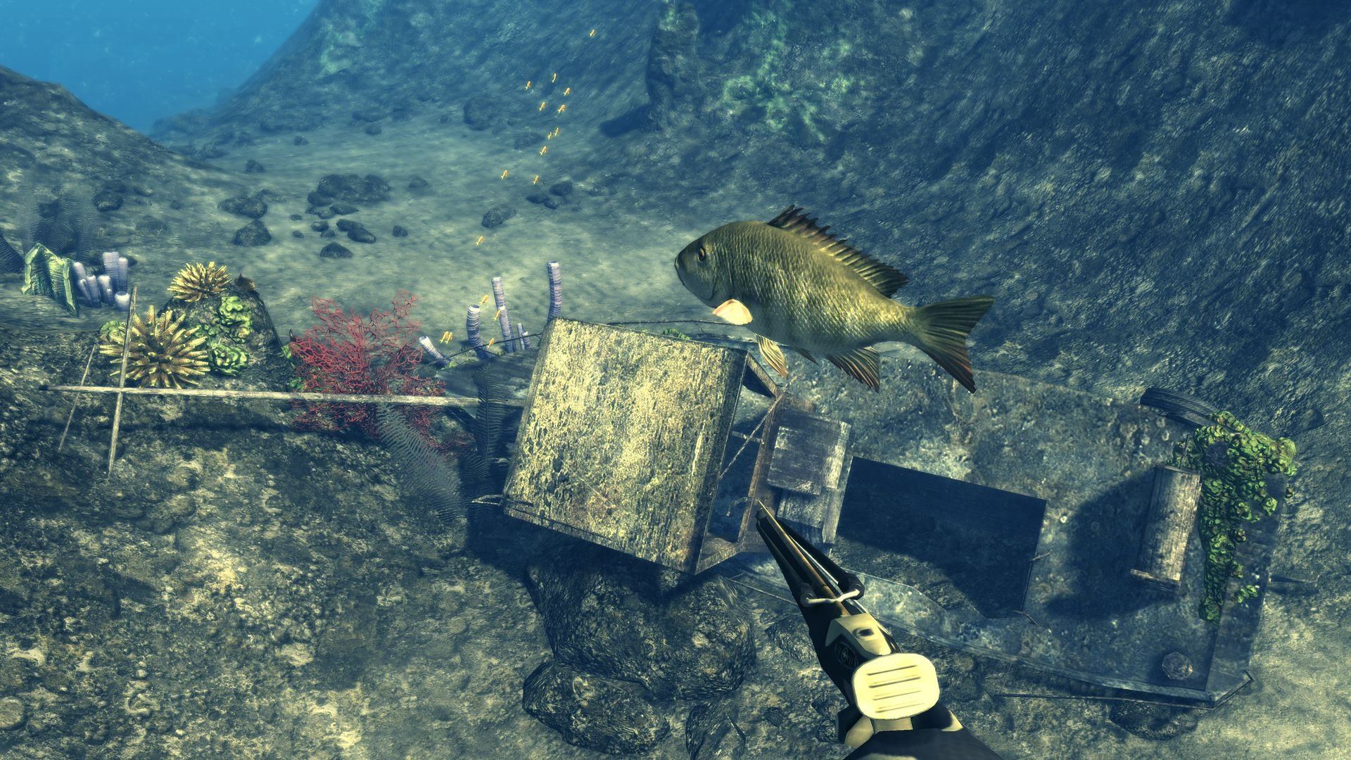 Скачать бесплатно игру подводная охота на компьютер