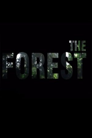 The Forest ������� ���������