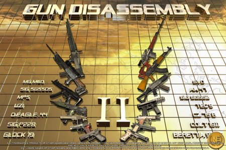 Gun disаssembly 2