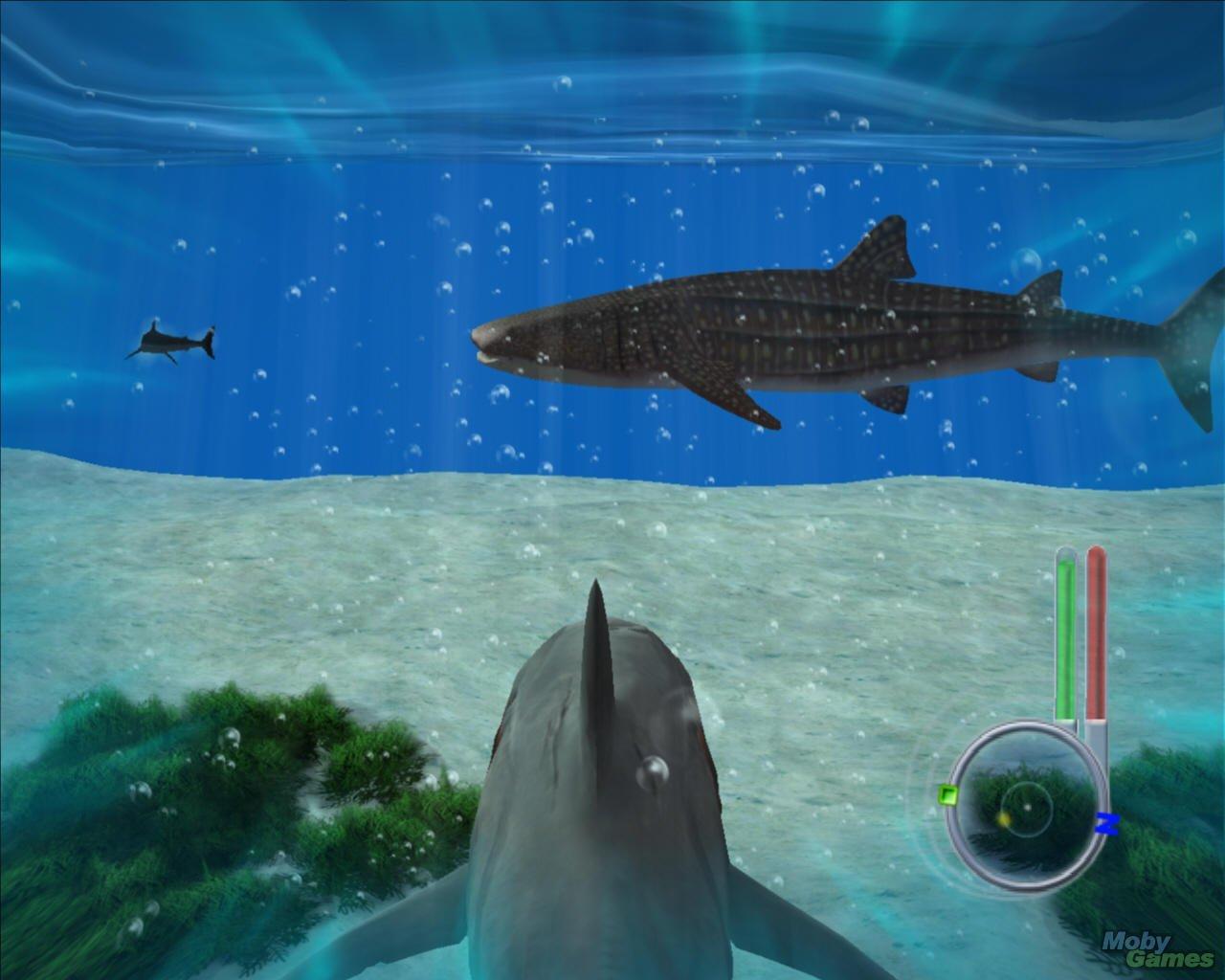 Скачать торрент симулятор акулы